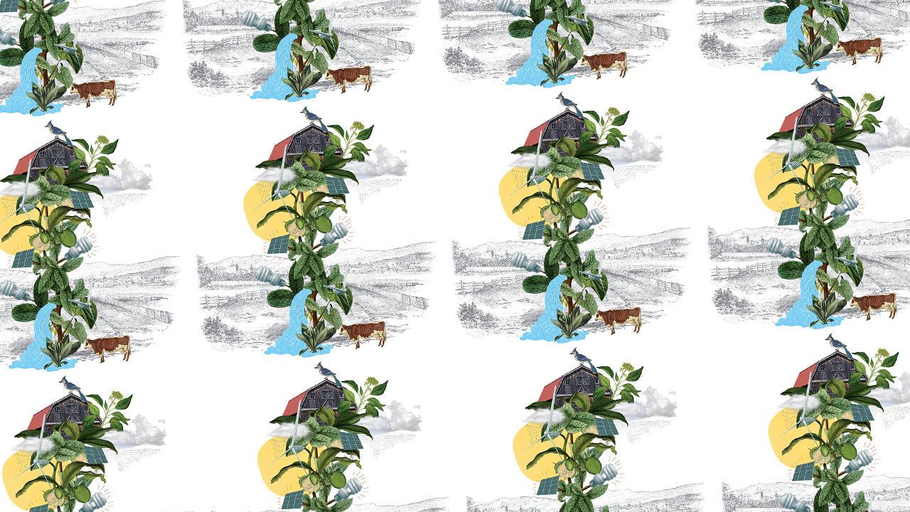 Max-O-Matic Illustration Burlington Vermont Green Strategy